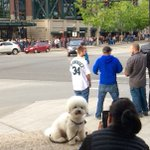 Look at this picture. A @Mariners fan on #BarkAtThePark night taking a cute pic! #k5home https://t.co/A5NwDiok0y