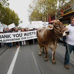 Thank you Australia for supporting our dairy farmers #Melbourne Photo by @EddieJim2 https://t.co/sFGeSOH9A3