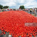 See Tomato o. 5000 people attempt to replicate Spains famous La Tomatina tomato-throwing festival, at Flemington. https://t.co/XPqXRQWU2i