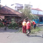 Pohon tumbang d jl selakasao kota tasik, menimpa beca yg sdang mangkal, tidak ada korban, @TaselaUpdate @radartasik https://t.co/YSGrC0cnPE