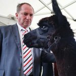 """Sorry Bambi, but youre all that stands between us and boat loads of Muslim terrorists.."" #ausvotes https://t.co/5UUhwtqf42"