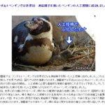 フンボルトペンギンの凍結精子を使った人工授精に成功 山口県の海響館 https://t.co/TlV1Vcrnwx https://t.co/3uFKay2DJt