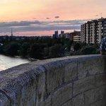 Existen muchos tipos de amor, pero nos empeñamos en buscar sólo el de la pareja. #Buenasnoches, #Zaragoza... 😊 https://t.co/Qe68bmjkrw