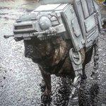 .@OregonHumanes Star Wars #PugCrawl raised $16k, drew 1,700 attendees & 650 dogs- https://t.co/By7VJhPePw #PDX https://t.co/TJPnv9zefT