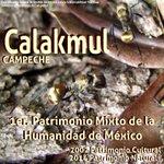 27º Aniversario del Decreto como #ReservadelaBiosfera a #Calakmul #Campeche Patrimonio Mixto de la Humanidad @UNESCO https://t.co/w9NjvnK3hO