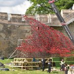 Youll be able to view the Poppies:Wave sculpture at @LincolnCastle from tomorrow https://t.co/OOkde6ymNk https://t.co/jtMF6KtPdL