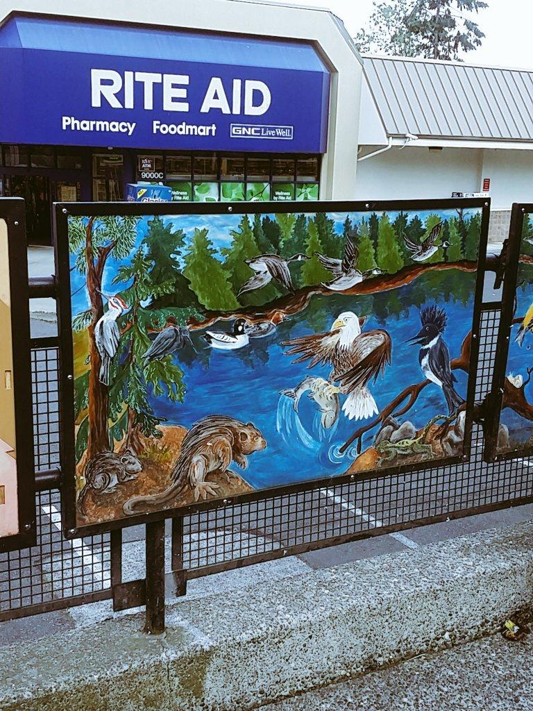 Rainier Beach neighborhood bust stop. Rite aid is a good shopping resource too https://t.co/ucOYkfhpiY