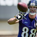 Dennis Pitta is back on the field.   Get a look: https://t.co/WsHCDc0b90 https://t.co/hB7pMF5lY3