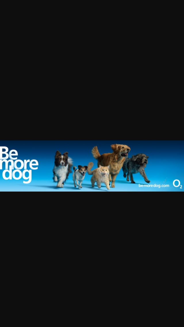 Is it me or have O2 gone too far? #HumanPups https://t.co/5PMkHdMmDf