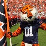 Greatest Mascot • ELITE 8 •  RT ~ Herbie Husker Fav ~ Aubie the Tiger https://t.co/0vHu3KgWdy