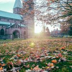 "Southwell Minster in Autumn - Photo Print 12""x8"" Limited Edition Proof P… https://t.co/pdRfQlVYWL #sheffield #Print https://t.co/7AyPgV4OQd"