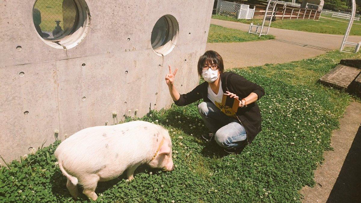 いつもの4人で長崎旅行行ってきた(キヨ牛ガチレト)!!第4弾遊園地シリーズとしてハウステンボスも行ってきました、楽しすぎた!!6月に投稿される予定なのでよろしくどうぞ。豚めっちゃ可愛い、長崎関係ないけど。 https://t.co/CZgtSVxpfY