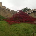 A first look at the poppies at Lincoln Castle... More on @looknorthBBC https://t.co/9OKymgffXm