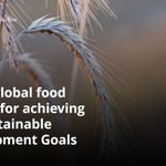 The global food system needs to be reshaped for us to hope to achieve the #SDGs: https://t.co/d5T7JqoQfz https://t.co/ZEBPzffrVw