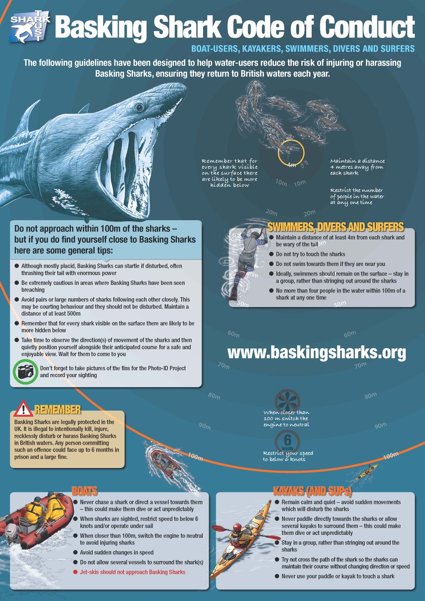 If you're out on the water this summer & see a Basking #Shark - follow the Code of Conduct for a safe encounter! https://t.co/I2paZu4djo