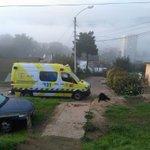 Madre, hijo y un perro mueren electrocutados en el patio de su casa en Viña del Mar https://t.co/Puj25aYXe6 https://t.co/6lghV427jY