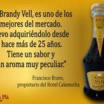 Els professionals recomanen #brandyvell Destilerías Plà #Puçol #puzol #hortanord #Valencia https://t.co/tm32R4NjlF