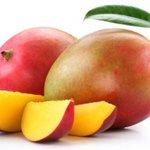 Gobierno autoriza a importar mango desde Guatemala por primera vez https://t.co/fnUan7et4j https://t.co/AUVMQjSt5B