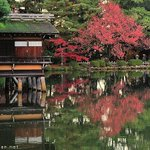 Uchihashi-tei Tea House https://t.co/q6hXVrF3Wk #Japan #garden https://t.co/Cmu9iL9ybg