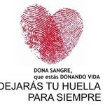 Buenos días #FelizViernes hoy puedes #donarsangre en #Abanilla #Ricote #LaAlgaida #CRHMurcia #Cartagena #Donasangre https://t.co/Jz6GDOWiXJ