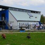 Informatiebijeenkomst toekomst stadsboerderij De Balijhoeve #Zoetermeer https://t.co/ezI7WgPytY https://t.co/5Ct6RSdvMy