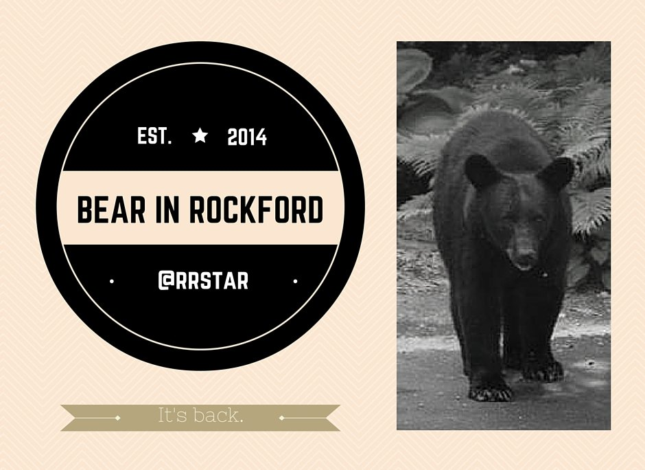 Have you gotten a photo of @BearInRockford ? Tweet it at us or send it to online@rrstar.com https://t.co/tBPwiKaLXz https://t.co/6CP9wynVAw