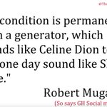 One of the wackiest Mugabe quotes Ive come across. The Celine Dion - Shatta Wale analogy though, could start a war. https://t.co/uByaBVs0jU