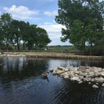 waterfowl park display ponds @WascanaCentre are a great place to explore! Remember #breadisbad #seeyqr #YQRFAM2016 https://t.co/sIXu6PgpO6
