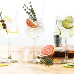 How to craft the PERFECT G&T (tips and 3 awesome #recipes from @shaunlayton) https://t.co/TqLzT3w8c0 https://t.co/VjCDiQZ280