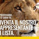 I seggi vanno vigilati, e noi mettiamo lui! :) ci manca ancora qualche leone. Aderisci qui-> https://t.co/plT3TUhpQ5 https://t.co/y9nN7jkrKO