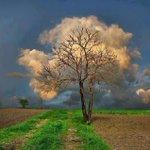 الغيمة تجملها وتسترها وتعدها بربيع قادم ! https://t.co/FEWEmaehQ7
