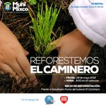 Este domingo a partir de las 9 AM Los invito a nuestra actividad de Reforestación en El Caminerk, Los espero!! https://t.co/295K4MfFsw