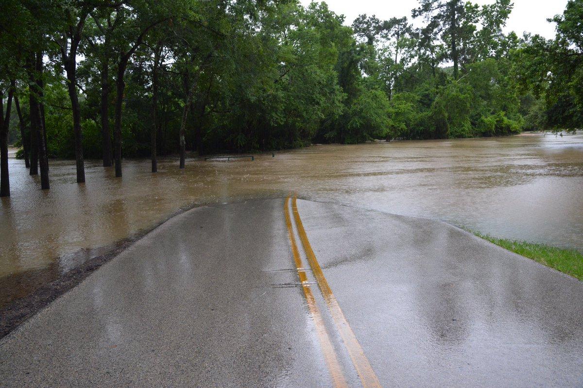 @HerzogWeather @HellerWeather cypress creek is overflowing https://t.co/iFvxcoPUlI