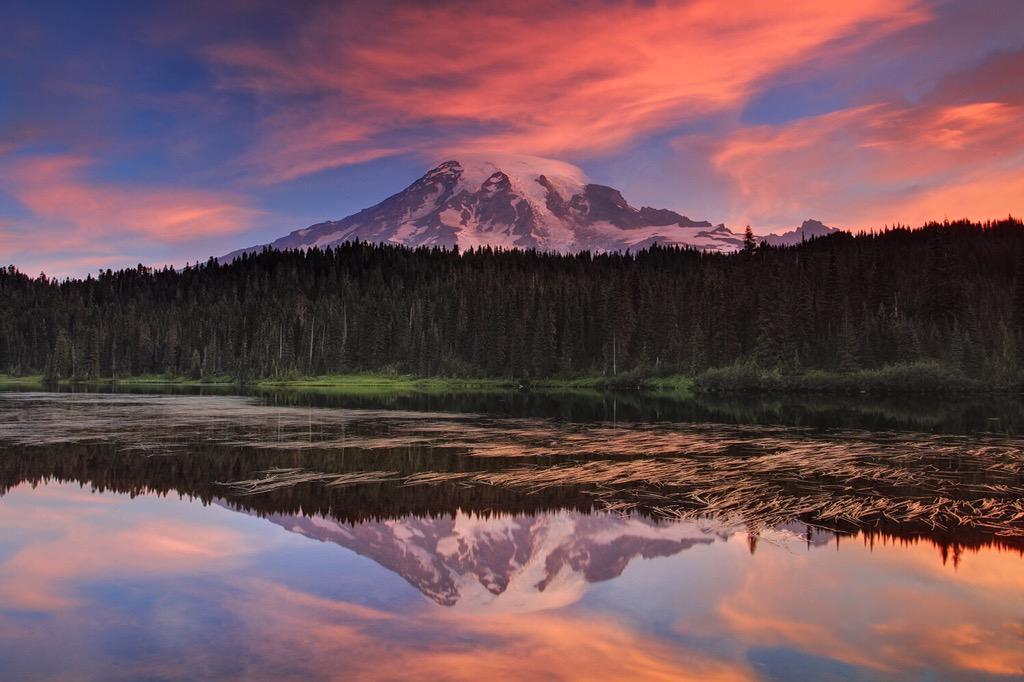 Sunrise at Mount Rainier, Washington | Photography by ©Xavier Cohen https://t.co/KsduAMQL3P