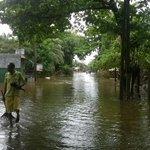 Flood No.02 in malwana gandiyawalewa. We cleaned this area last wed. Again flood. #lka #FloodSL https://t.co/JJVakBeF1G