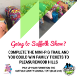 Going to @SuffolkShow? Take part in the mini-pig trail and you could win family tickets to @pwhills! https://t.co/3P1xDR0Yh2