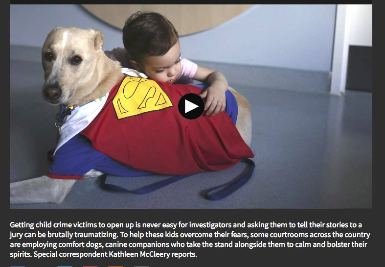Meet the 'courtroom dogs' who help child crime victims tell their stories https://t.co/AqDxBPztjj #Dogs #GoodDog https://t.co/DEaiKZRFoT