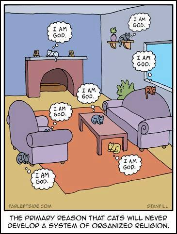 this one imo is the best cat cartoon tho... https://t.co/BU5ZfuMiJw