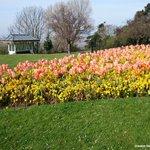 Colour in #Southend Cliff Gardens https://t.co/d1puCJdfWT