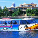 Awesome Surfers Paradise Adventure! Aquaduck Discount Tickets - Surfers Paradise Qld https://t.co/BbS65Cac1e https://t.co/Y3l600hYkX