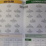 Clare and Limerick panels for @MunsterGAA SFC 1/4 final at 2pm in Limerick #GAA https://t.co/0K3B5czEM9