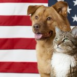 The Adoption Center on Hanshaw Rd will be closed Monday for Memorial Day. The Annex will be open 11am-7pm! #twithaca https://t.co/bQhIOCWzyS