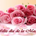 Quiero felicitar a todas las madres dominicanas que con su amor y cuidados hacen de este mundo un lugar mejor https://t.co/wYuNOEHhZi