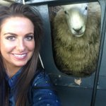 Dont forget Sky 191 at 7pm where I bring you all The News from The Leinster Sheep Shearing Championships @irishtv https://t.co/jWpYxmYpWT