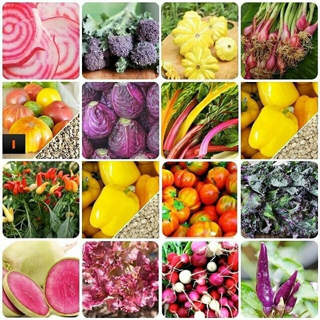 ENDS TONIGHT!!! We're giving away a FREE {Rainbow Garden Variety Pack} which includes an assortment of our 15 most … https://t.co/Mc4qCvsztt