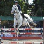 Летающие кони. В Бишкеке прошли соревнования по конкуру. https://t.co/X3G91hjA1m https://t.co/jNC3zuO7Rk