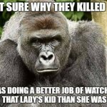 RIP Harambe, he just had his 17th birthday. https://t.co/WQH2H10ymE