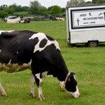Wie geht es weiter in der Milchkrise? Die wichtigsten Antworten zum #Milchgipfel pic:dpa https://t.co/x0VoUBNRgN https://t.co/F5uGM8Qo44