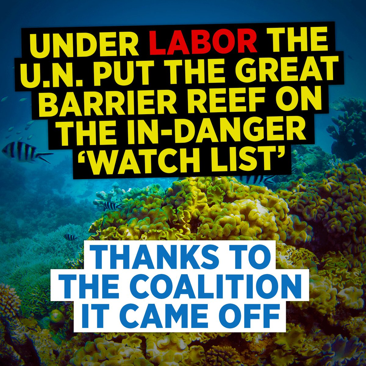 Under Labor, the Great Barrier Reef was on-track to be listed as 'in danger'. It came off the 'watch list' under us. https://t.co/p814Jti6fS