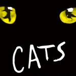 Only a week to go until Cats opens at the Regent - whos joining us next week? https://t.co/t8q5U8gVuV https://t.co/bdQBGCXJTJ